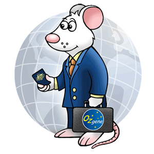 Ozgene travel mouse