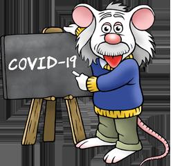 COVID-19 mouse
