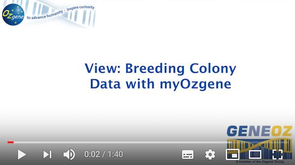 Ozgene COVID-19 testing